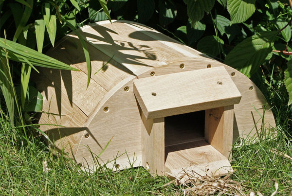 hedgehog-house