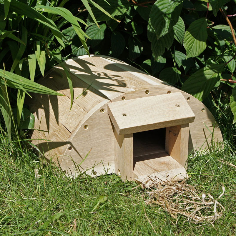 hedgehog-house