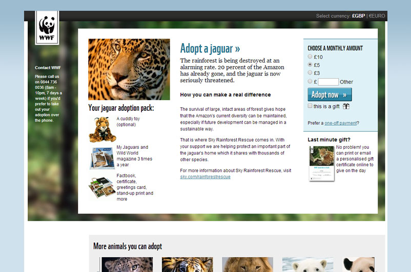 adopt-a-jaguar