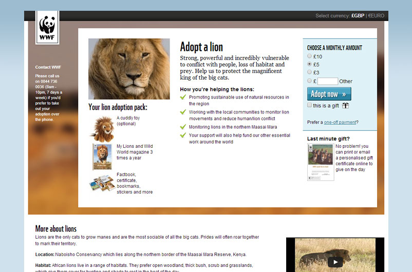 adopt-a-lion